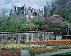 Things to Do in Asheville, NC - The Biltmore Gardens